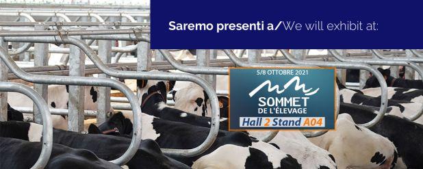 5 Sommet homepage bozza(3)