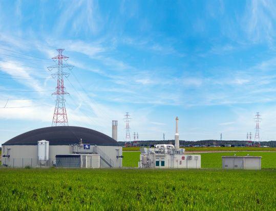 Biogas 300 kw