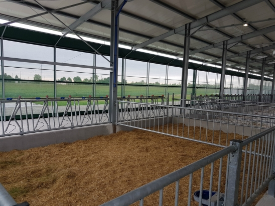 Allevamento bovini Battistella Luciano Az.Agr. F2