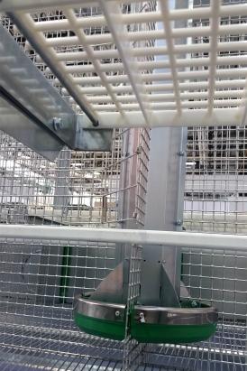 Allevamento cunicolo - Zona nido e lattazione