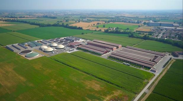 Azienda Agricola Fugazza - Allevamento bovini