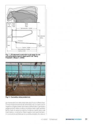IZ   Articolo Cerzoo Pagina 2