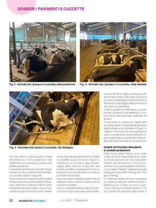 IZ   Articolo Cerzoo Pagina 3