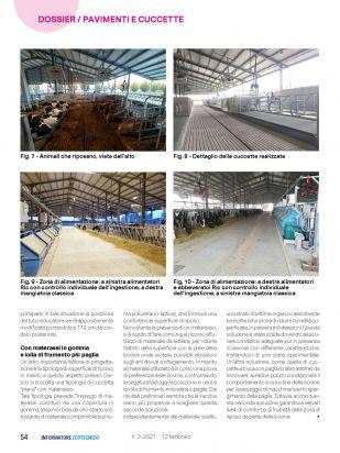 IZ   Articolo Cerzoo Pagina 5