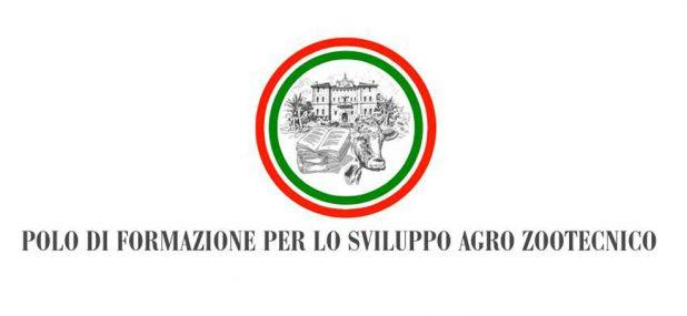 POLO DI FORMAZIONE MACCARESE