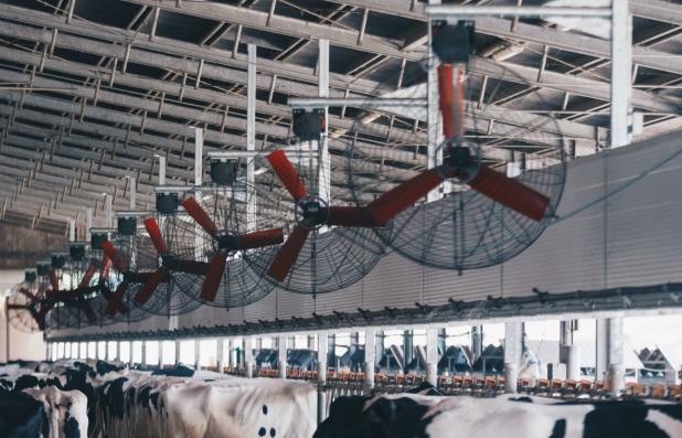 RotaGuido ventilazione e barriere Bovini Comfort Bernardis Udine 2017