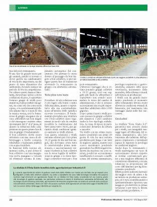page0022 vitelli rota guido